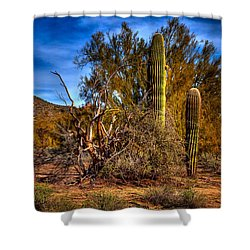 Arizona Landscape II Shower Curtain by David Patterson