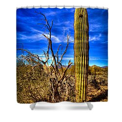 Arizona Landscape IIi Shower Curtain by David Patterson