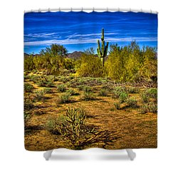 Arizona Landscape Iv Shower Curtain by David Patterson