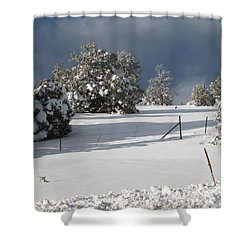 Arizona Snow 3 Shower Curtain
