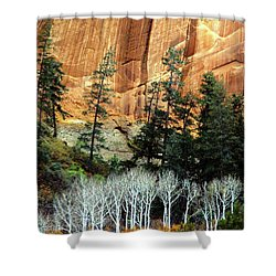 Arizona's Betatkin Aspens Shower Curtain by Ed  Riche