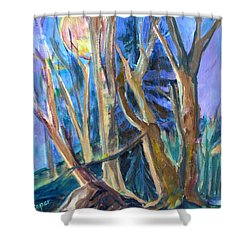 Armageddon Or Twilight Coming Shower Curtain