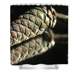 Armored Pine Cone Shower Curtain