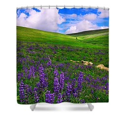 Shower Curtain featuring the photograph Aroma Of Summer by Kadek Susanto