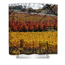 Around And About In My Neck Of The Woods Series 28 Shower Curtain