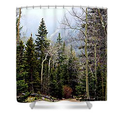 Around The Bend Shower Curtain by Barbara Chichester