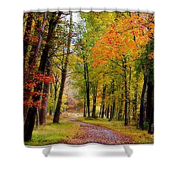 Around The Bend Shower Curtain by Patti Whitten