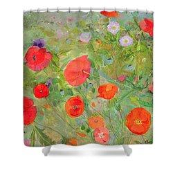 Arpeggiando Shower Curtain by Ann Patrick