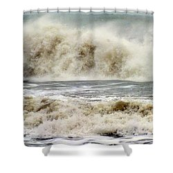 Arrival Of Sandy Shower Curtain by Karen Wiles
