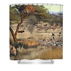 Arrival Shower Curtain