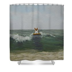 Arriving From Wales Shower Curtain