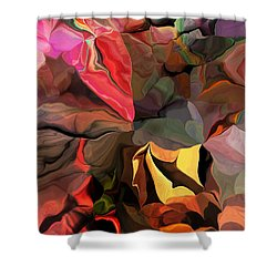 Arroyo  Shower Curtain by David Lane