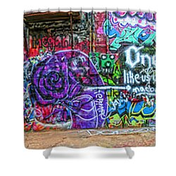 Art Alley Panorama Shower Curtain