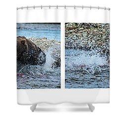 Art Of Catching Salmon  Shower Curtain by Dan Friend
