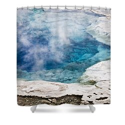 Artemisia Geyser Shower Curtain