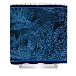 Artic Shower Curtain
