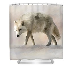Arctic Wolf Shower Curtain by Johanne Dauphinais