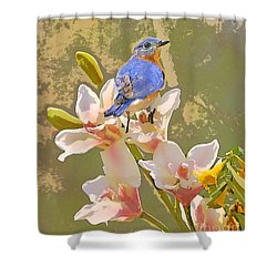 Bluebird On Orchids Artistic Photo Shower Curtain
