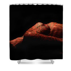 Artistic Crucifiction Shower Curtain by Donna Blackhall