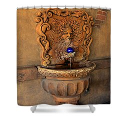 Artistic Water Fountain Shower Curtain
