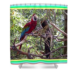 Shower Curtain featuring the photograph Artistic Wild Hawaiian Parrot by Joseph Baril