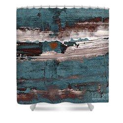 artotem I Shower Curtain by Paul Davenport