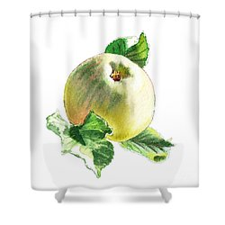 Shower Curtain featuring the painting Artz Vitamins Series A Happy Green Apple by Irina Sztukowski