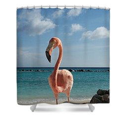 Aruba Hairy Eyeball Shower Curtain by HEVi FineArt