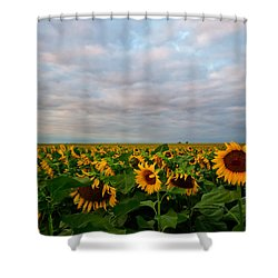 Shower Curtain featuring the photograph As Far As The Eye Can See by Ronda Kimbrow