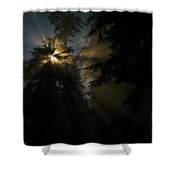 As If I Needed Some Inspiration Shower Curtain by Jeff Swan