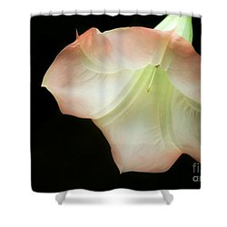 As The Bell Tolls Shower Curtain by Sabrina L Ryan