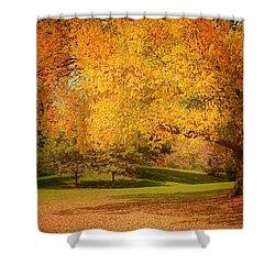 As The Leaves Fall Shower Curtain by Kim Hojnacki