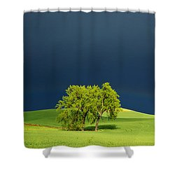 As The Sun Returns Shower Curtain by Mary Lee Dereske