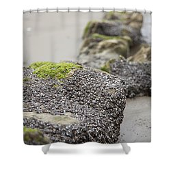 As You Leave Shower Curtain by Amanda Barcon