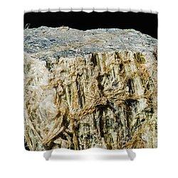 Asbestos Shower Curtain by Millard H. Sharp