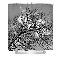 Shower Curtain featuring the photograph Ash And Light by Robyn King