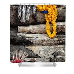 Asian Buddhism Shower Curtain