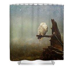 Asleep In The Misty Twilight Shower Curtain