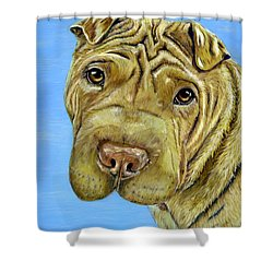 Beautiful Shar-pei Dog Portrait Shower Curtain