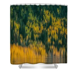 Shower Curtain featuring the photograph Aspen Abstract by Ken Smith