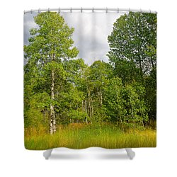 Shower Curtain featuring the photograph Aspen And Others by Jim Thompson