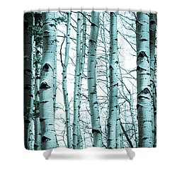 Aspen Blues Shower Curtain