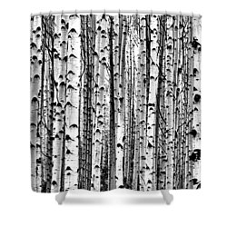 Aspen Boles Shower Curtain