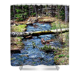 Shower Curtain featuring the photograph Aspen Crossing Mountain Stream by Barbara Chichester