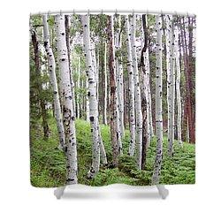 Aspen Forest Shower Curtain