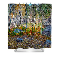 Shower Curtain featuring the photograph Aspen Grove by Jim Thompson