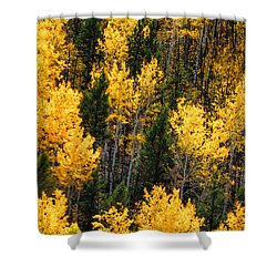 Aspen Grove Shower Curtain by Juli Ellen