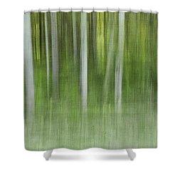 Aspen Grove  Shower Curtain by Priska Wettstein