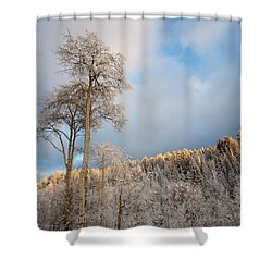 Aspen In Blue Shower Curtain