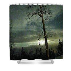 Aspen In Moonlight Shower Curtain by Brian Boyle